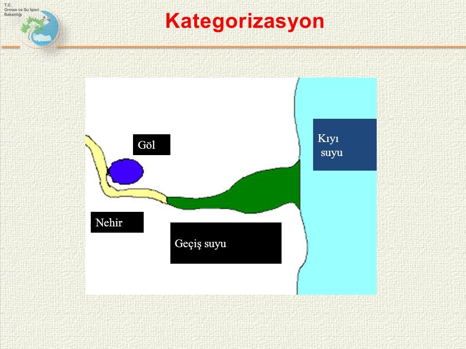 Göl Nehir Geçiş suyu Kıyı suyu Kategorizasyon