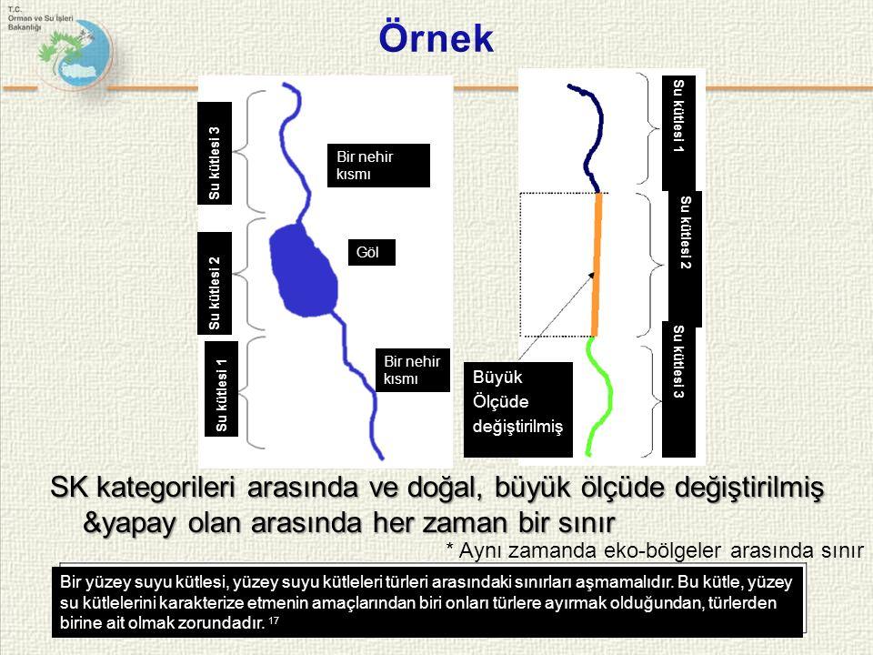 SK kategorileri arasında ve doğal, büyük ölçüde değiştirilmiş &yapay olan arasında her zaman bir sınır Büyük Ölçüde değiştirilmiş * Aynı zamanda eko-bölgeler arasında sınır Su kütlesi 1 Su kütlesi 2 Su kütlesi 3 Göl Bir nehir kısmı Su kütlesi 1 Su kütlesi 2 Su kütlesi 3 Bir yüzey suyu kütlesi, yüzey suyu kütleleri türleri arasındaki sınırları aşmamalıdır.