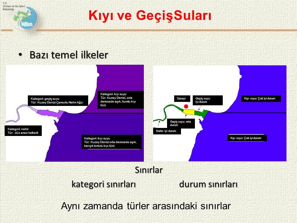 Türkiye Yeraltısuyu Yönetimi Kapasitesinin Geliştirilmesi Projesi Sunulan Program: ESEI 2012 PROGRAMI Projenin Bütçesi : 2.947.000 EUR AB Katkısı : 2.749.650 EUR Projenin Amacı : Ülkemizde Yeraltı Suyu Direktifi (2006/118/EC) ve Su Çerçeve Direktifi'nin yeraltı suyu ile ilgili hükümlerinin uygulanması maksadıyla kapasitenin arttırılması ve pilot alanlarda uygulamaların yapılmasıdır.