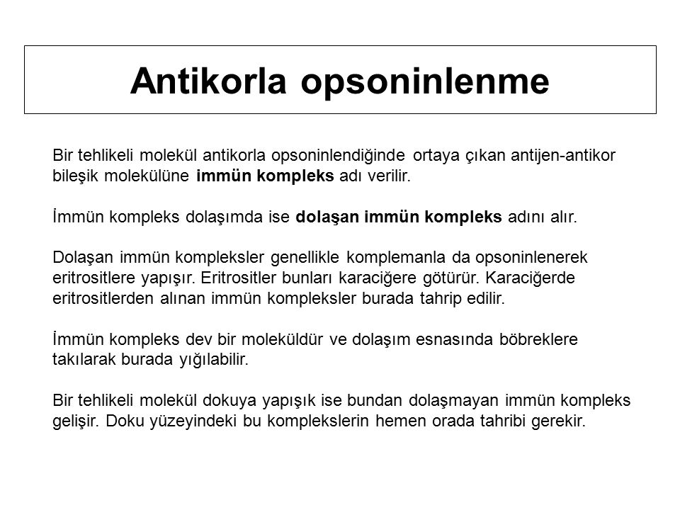 Bir tehlikeli molekül antikorla opsoninlendiğinde ortaya çıkan antijen-antikor bileşik molekülüne immün kompleks adı verilir.