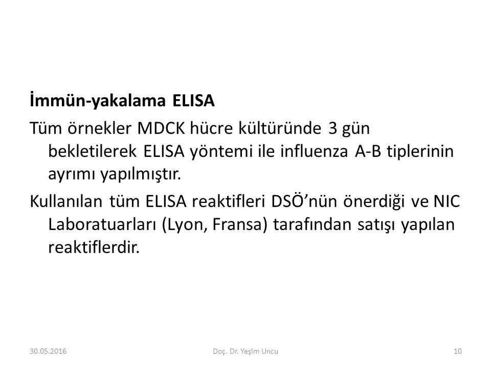 30.05.201610 İmmün-yakalama ELISA Tüm örnekler MDCK hücre kültüründe 3 gün bekletilerek ELISA yöntemi ile influenza A-B tiplerinin ayrımı yapılmıştır.