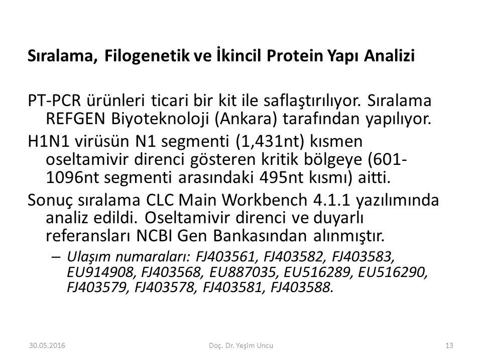 30.05.201613 Sıralama, Filogenetik ve İkincil Protein Yapı Analizi PT-PCR ürünleri ticari bir kit ile saflaştırılıyor.
