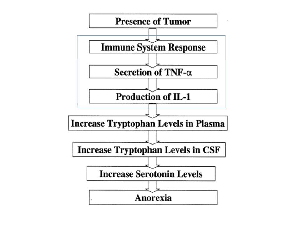 Malnütrisyonun Bağışıklık Sistemi Üzerine Etkileri T lenfosit fonksiyonu CD 4, CD 8  CD 4 / CD 8  B lenfosit fonksiyonu Fagositoz ± Bakterisidal kapasite  IL-1  IL-2 sekresyonunda  Humoral immünite IG düzeyleri ± Sekretuar IG ¯ C 3 ve C 4 ¯ Humoral immünite IG düzeyleri ± Sekretuar IG ¯ C 3 ve C 4 ¯