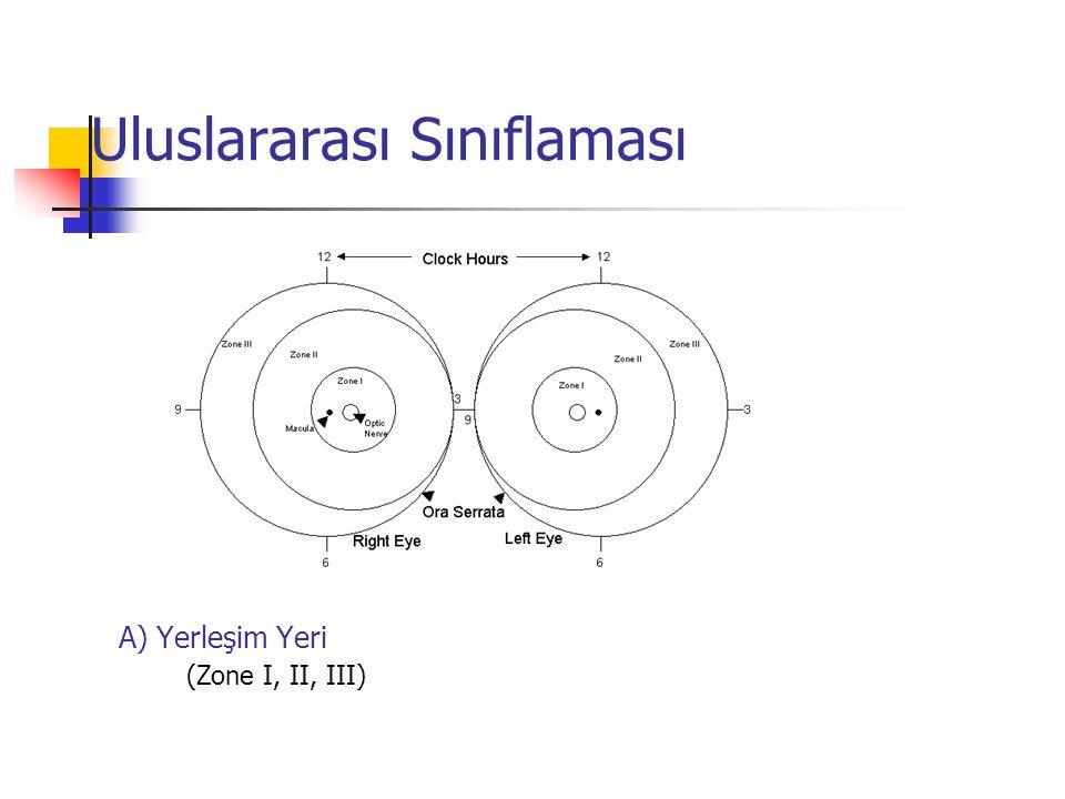 Uluslararası Sınıflaması A) Yerleşim Yeri (Zone I, II, III)