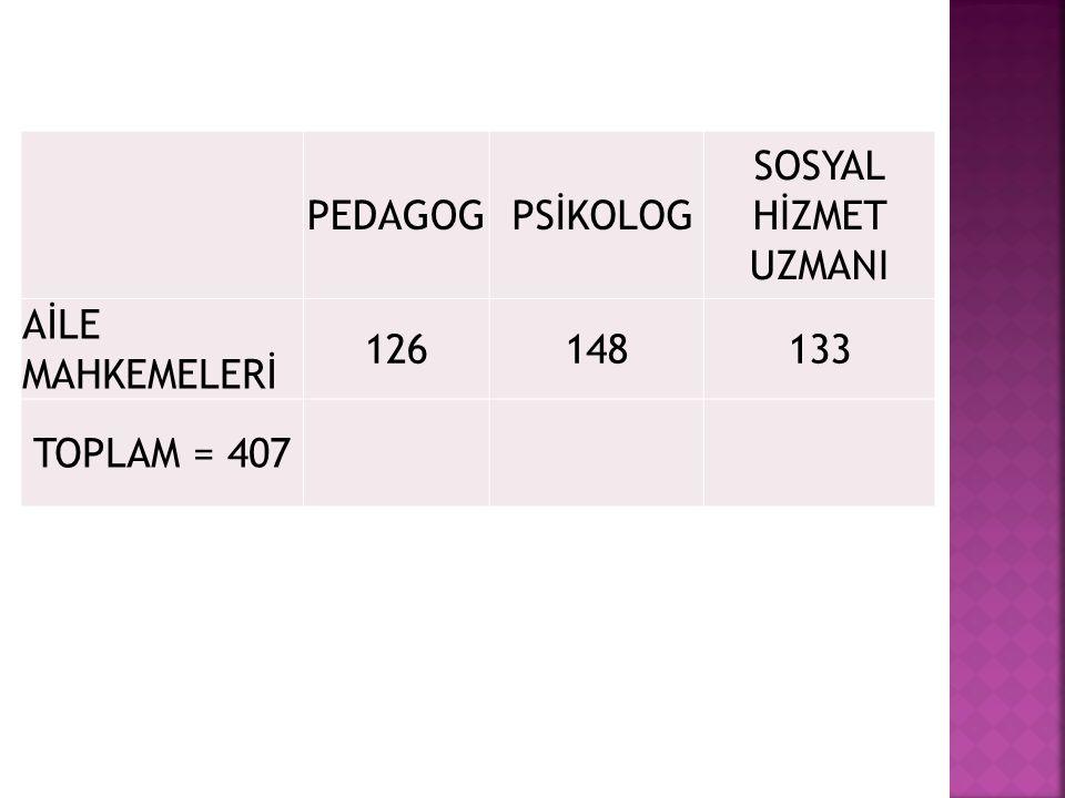 PEDAGOG PSİKOLOG SOSYAL HİZMET UZMANI AİLE MAHKEMELERİ 126148133 TOPLAM = 407