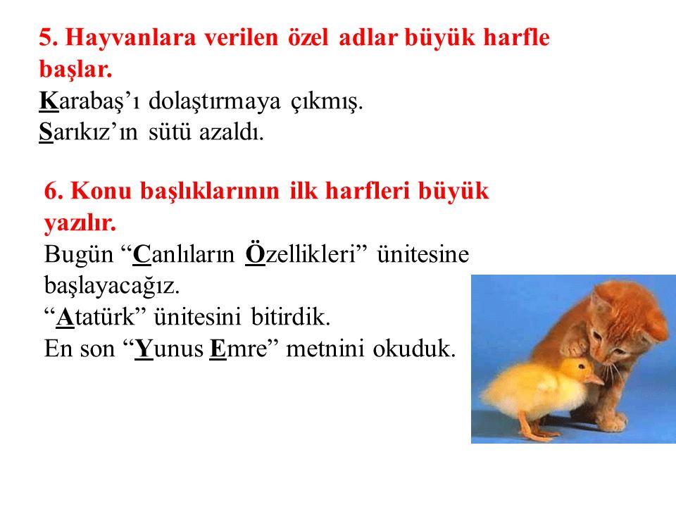 5. Hayvanlara verilen özel adlar büyük harfle başlar. Karabaş'ı dolaştırmaya çıkmış. Sarıkız'ın sütü azaldı. 6. Konu başlıklarının ilk harfleri büyük