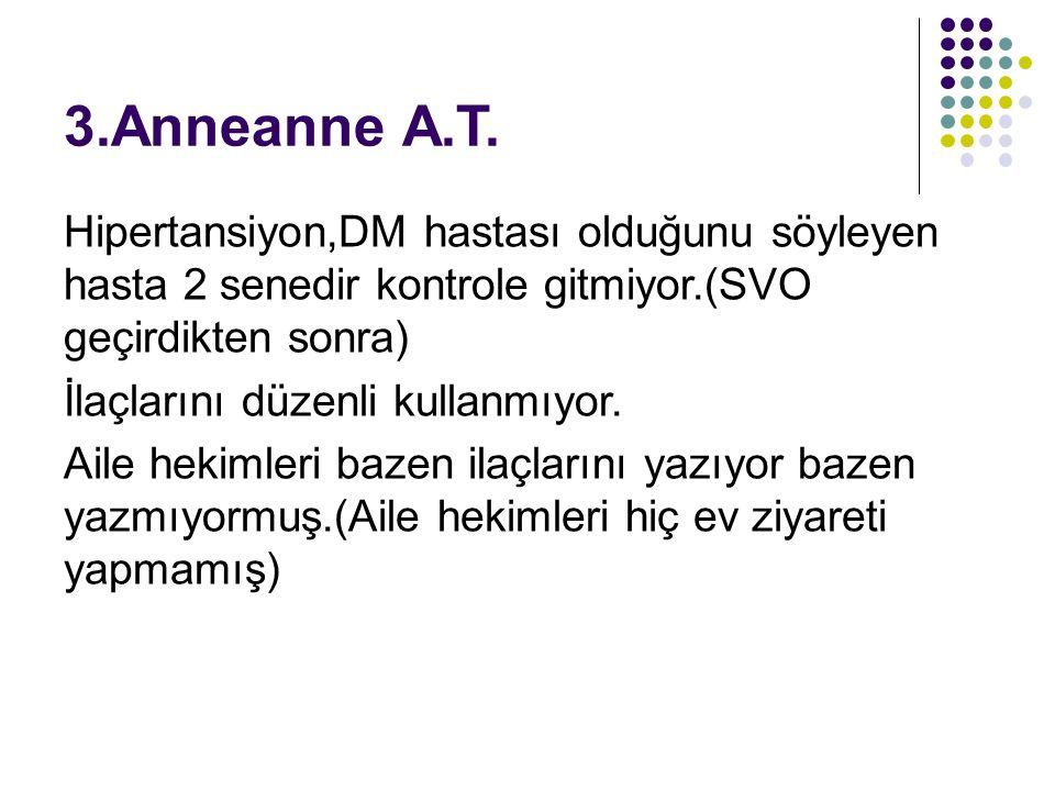 3.Anneanne A.T.