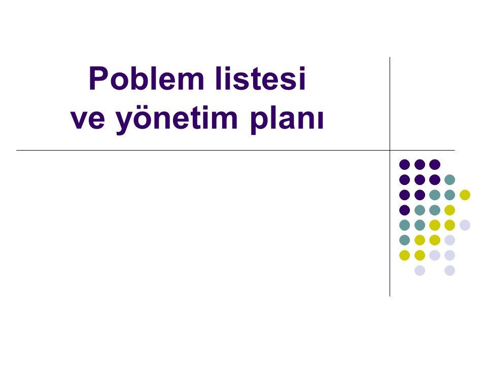 Poblem listesi ve yönetim planı