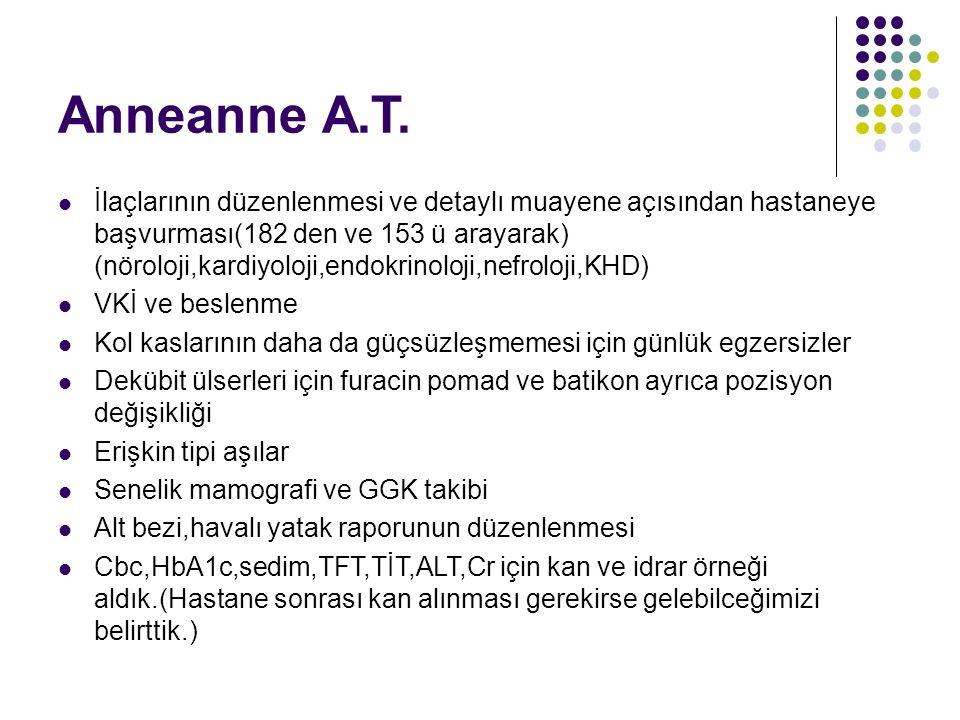 Anneanne A.T.