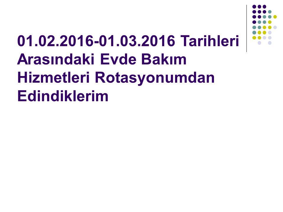 01.02.2016-01.03.2016 Tarihleri Arasındaki Evde Bakım Hizmetleri Rotasyonumdan Edindiklerim