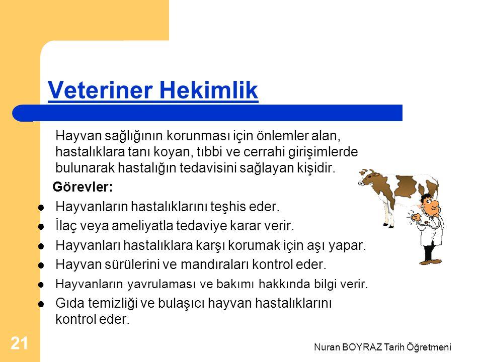 Nuran BOYRAZ Tarih Öğretmeni 21 Veteriner Hekimlik Hayvan sağlığının korunması için önlemler alan, hastalıklara tanı koyan, tıbbi ve cerrahi girişimlerde bulunarak hastalığın tedavisini sağlayan kişidir.