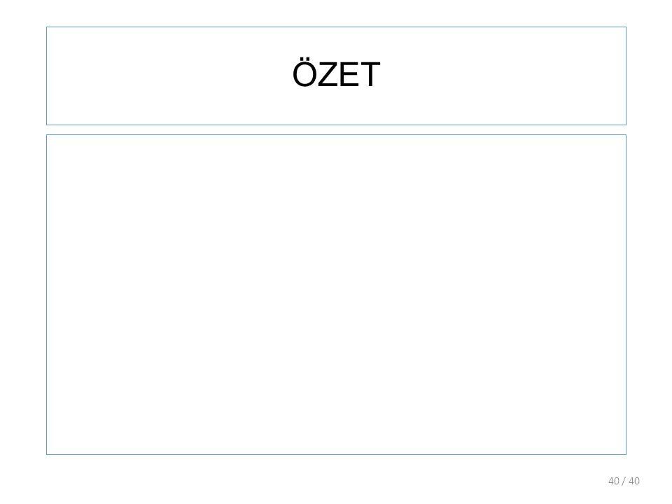 ÖZET / 4040