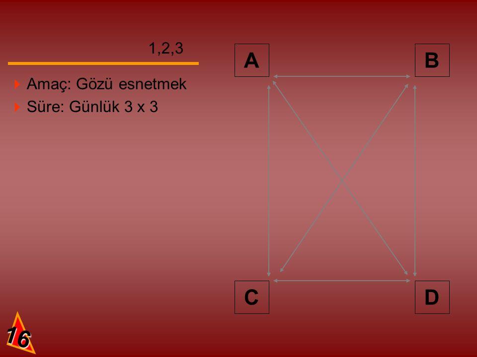 AB CD 1,2,3 16  Amaç: Gözü esnetmek  Süre: Günlük 3 x 3