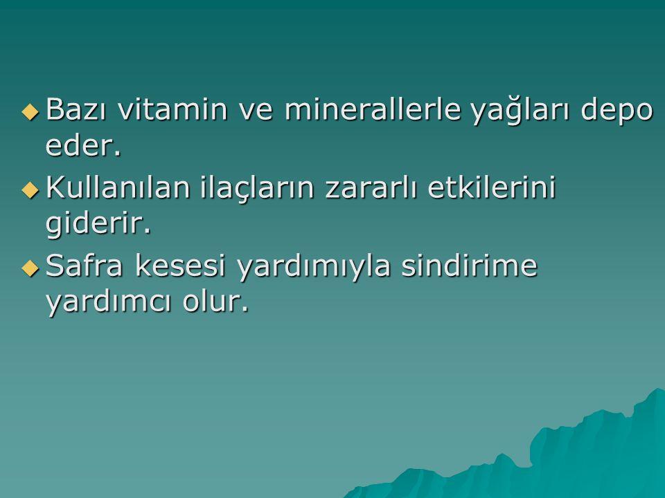  Bazı vitamin ve minerallerle yağları depo eder.  Kullanılan ilaçların zararlı etkilerini giderir.  Safra kesesi yardımıyla sindirime yardımcı olur