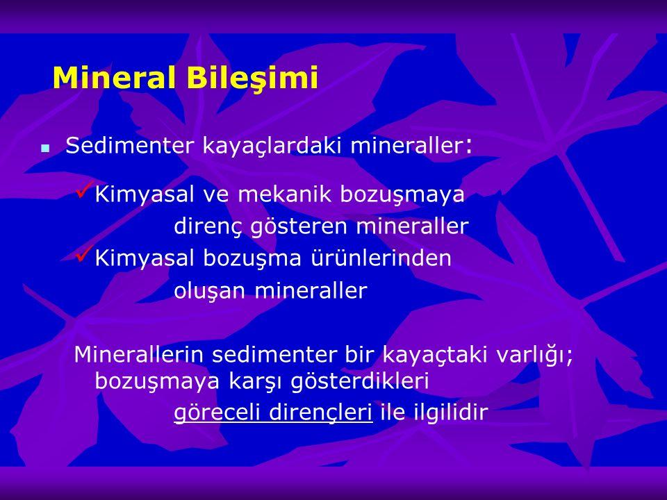Mineral Bileşimi Sedimenter kayaçlardaki mineraller : Kimyasal ve mekanik bozuşmaya direnç gösteren mineraller Kimyasal bozuşma ürünlerinden oluşan mi