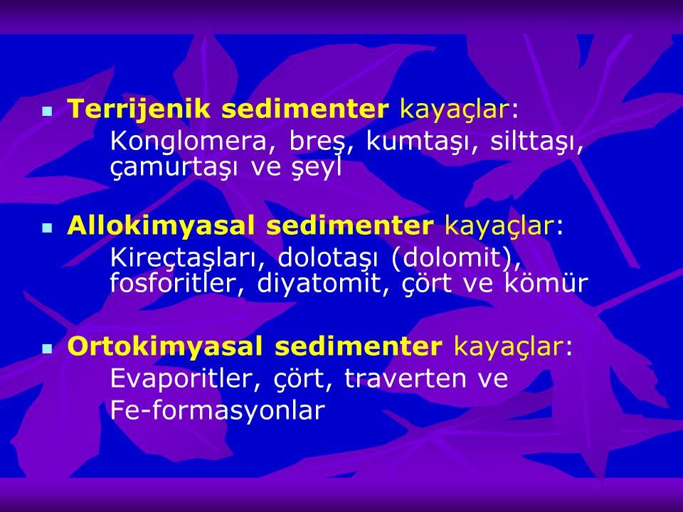 Terrijenik sedimenter kayaçlar: Konglomera, breş, kumtaşı, silttaşı, çamurtaşı ve şeyl Allokimyasal sedimenter kayaçlar: Kireçtaşları, dolotaşı (dolom