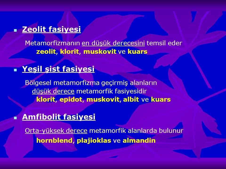 Zeolit fasiyesi Metamorfizmanın en düşük derecesini temsil eder zeolit, klorit, muskovit ve kuars Yeşil şist fasiyesi Bölgesel metamorfizma geçirmiş a