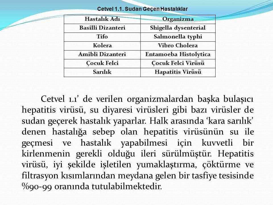Cetvel 1.1' de verilen organizmalardan başka bulaşıcı hepatitis virüsü, su diyaresi virüsleri gibi bazı virüsler de sudan geçerek hastalık yaparlar.