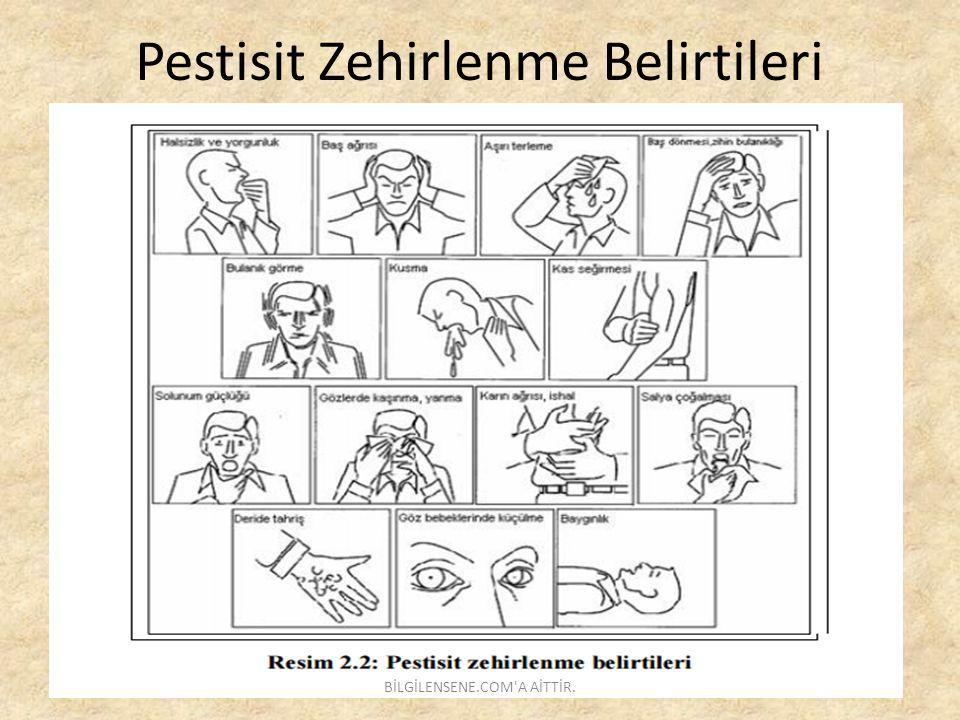 Pestisit Zehirlenme Belirtileri BİLGİLENSENE.COM'A AİTTİR.