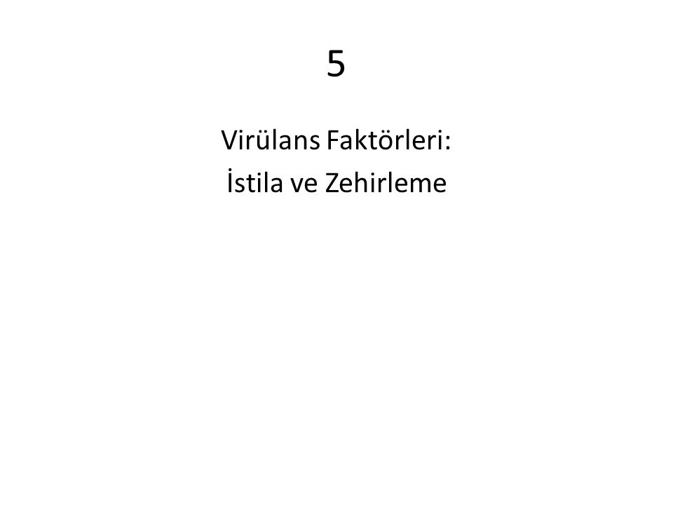 5 Virülans Faktörleri: İstila ve Zehirleme