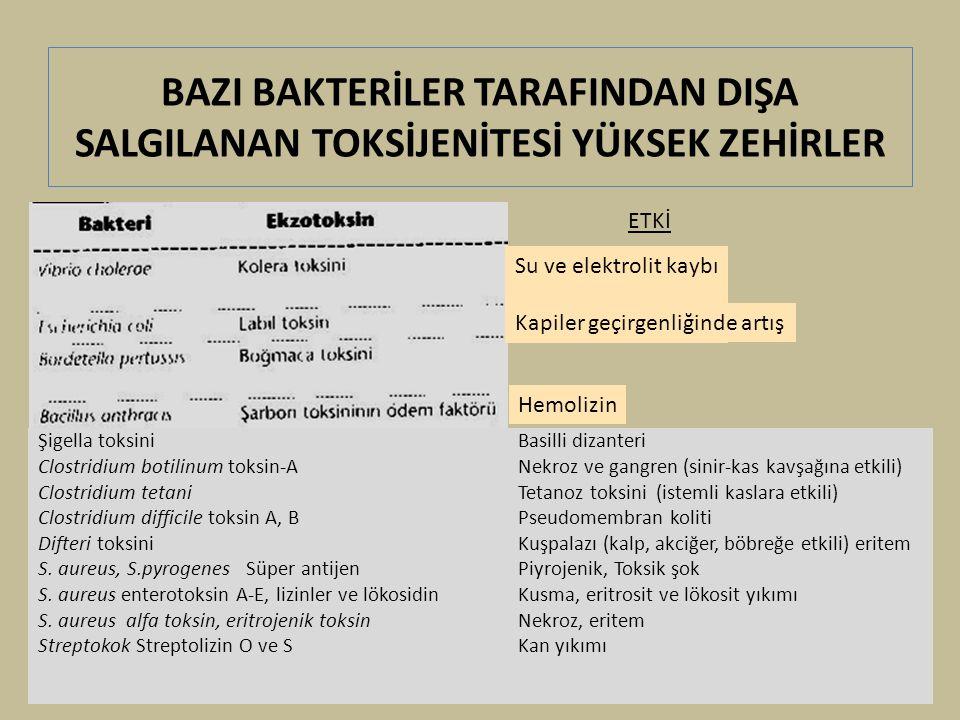 BAZI BAKTERİLER TARAFINDAN DIŞA SALGILANAN TOKSİJENİTESİ YÜKSEK ZEHİRLER Şigella toksini Basilli dizanteri Clostridium botilinum toksin-A Nekroz ve gangren (sinir-kas kavşağına etkili) Clostridium tetani Tetanoz toksini (istemli kaslara etkili) Clostridium difficile toksin A, BPseudomembran koliti Difteri toksini Kuşpalazı (kalp, akciğer, böbreğe etkili) eritem S.