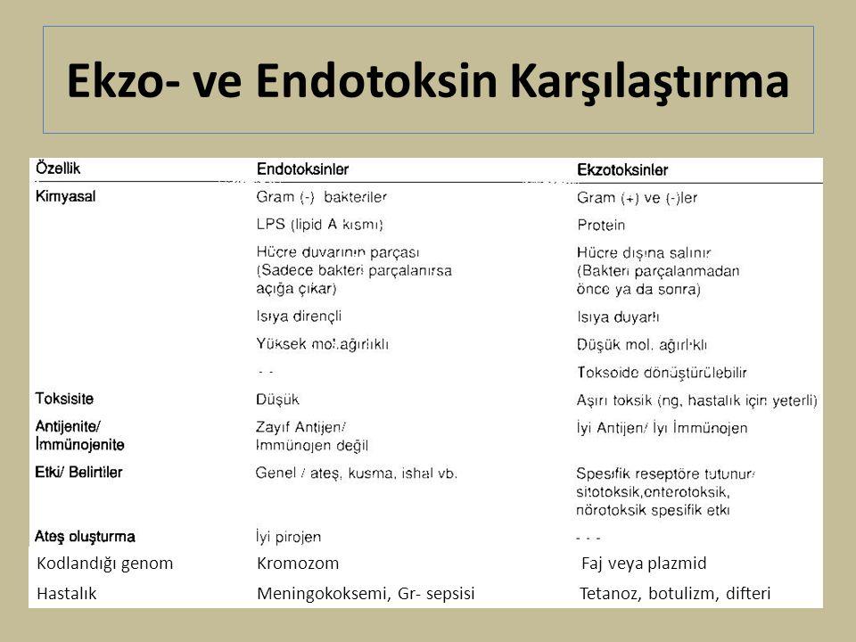 Ekzo- ve Endotoksin Karşılaştırma Kodlandığı genom Kromozom Faj veya plazmid Hastalık Meningokoksemi, Gr- sepsisi Tetanoz, botulizm, difteri