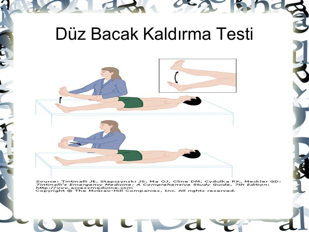 Düz Bacak Kaldırma Testi