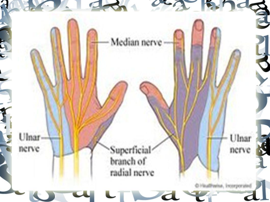 Diğer Nedenler Temporal arterit Servikal spinal epidural hematom, koagülasyon bozukluğu olanlarda akla gelmelidir Kardiyak iskemi!.