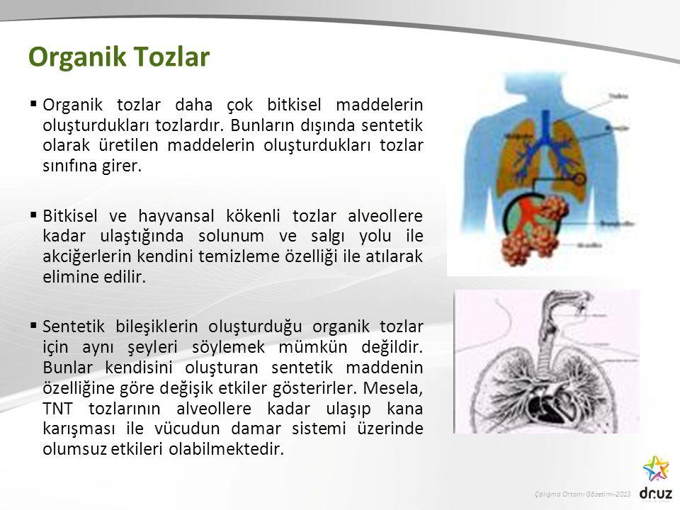 Çalışma Ortamı Gözetimi-2013 Organik Tozlar  Organik tozlar daha çok bitkisel maddelerin oluşturdukları tozlardır.