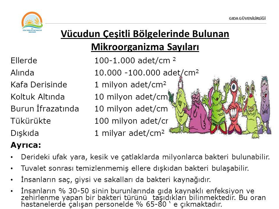 GIDA GÜVENİLİRLİĞİ Vücudun Çeşitli Bölgelerinde Bulunan Mikroorganizma Sayıları Ellerde100-1.000 adet/cm 2 Alında10.000 -100.000 adet/cm 2 Kafa Derisinde 1 milyon adet/cm 2 Koltuk Altında10 milyon adet/cm 2 Burun İfrazatında10 milyon adet/cm 2 Tükürükte 100 milyon adet/cm 2 Dışkıda1 milyar adet/cm 2 Ayrıca: Derideki ufak yara, kesik ve çatlaklarda milyonlarca bakteri bulunabilir.