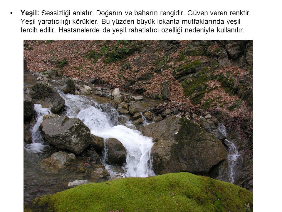 Yeşil: Sessizliği anlatır.Doğanın ve baharın rengidir.