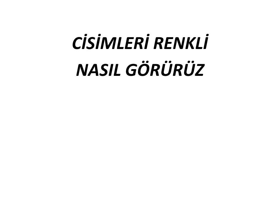 Hidayet GÜNEŞ Fen ve Teknoloji Öğretmeni Beşeylül Ortaokulu Nazilli/AYDIN