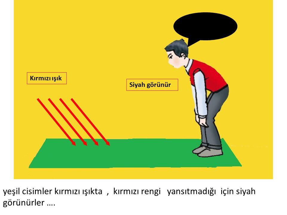 Siyah görünür Kırmızı ışık yeşil cisimler kırmızı ışıkta, kırmızı rengi yansıtmadığı için siyah görünürler ….