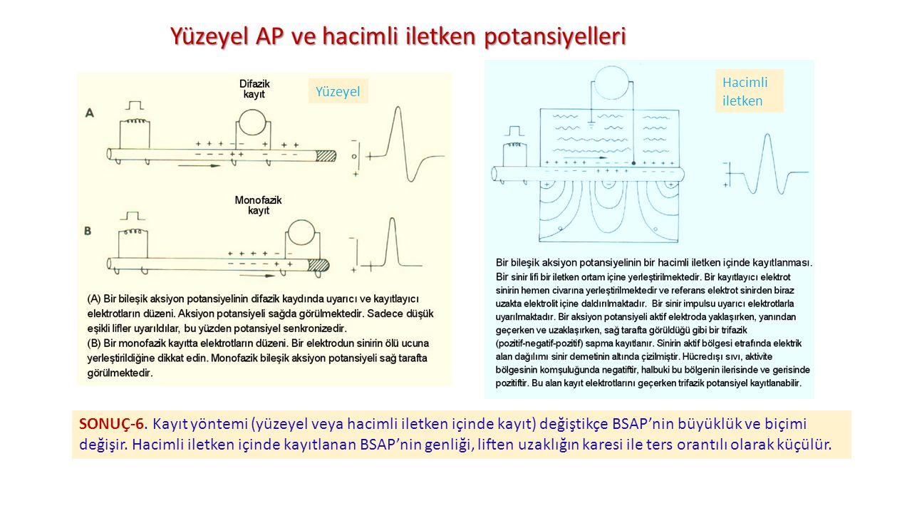 Yüzeyel AP ve hacimli iletken potansiyelleri SONUÇ-6. Kayıt yöntemi (yüzeyel veya hacimli iletken içinde kayıt) değiştikçe BSAP'nin büyüklük ve biçimi