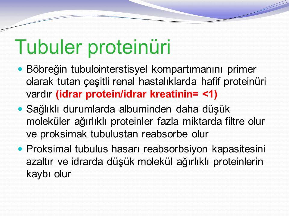 Tubuler proteinüri Böbreğin tubulointerstisyel kompartımanını primer olarak tutan çeşitli renal hastalıklarda hafif proteinüri vardır (idrar protein/i