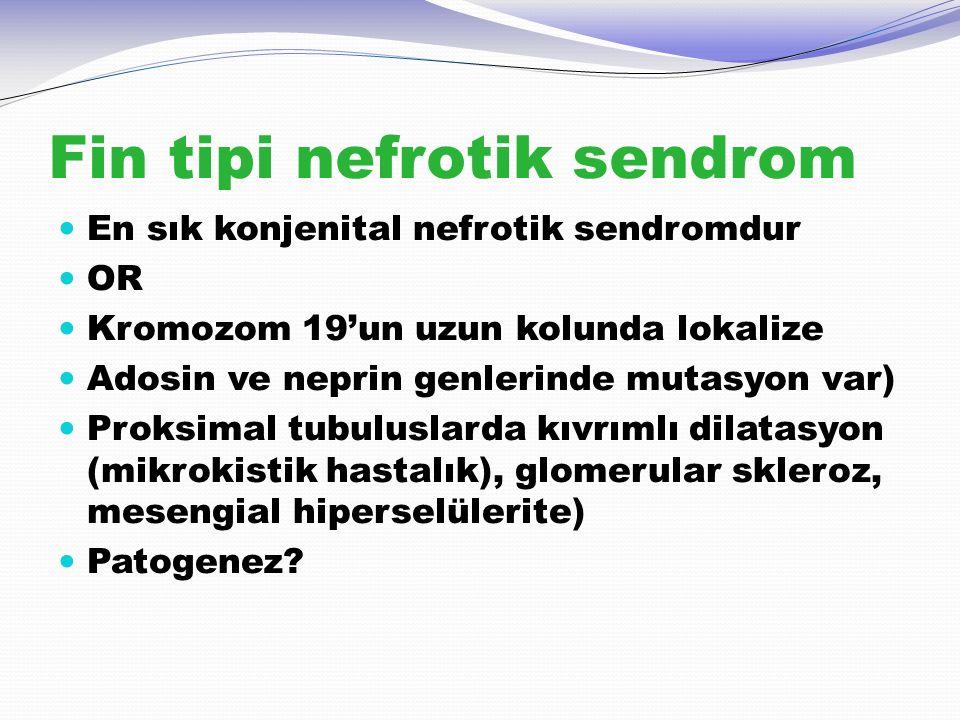 Fin tipi nefrotik sendrom En sık konjenital nefrotik sendromdur OR Kromozom 19'un uzun kolunda lokalize Adosin ve neprin genlerinde mutasyon var) Prok