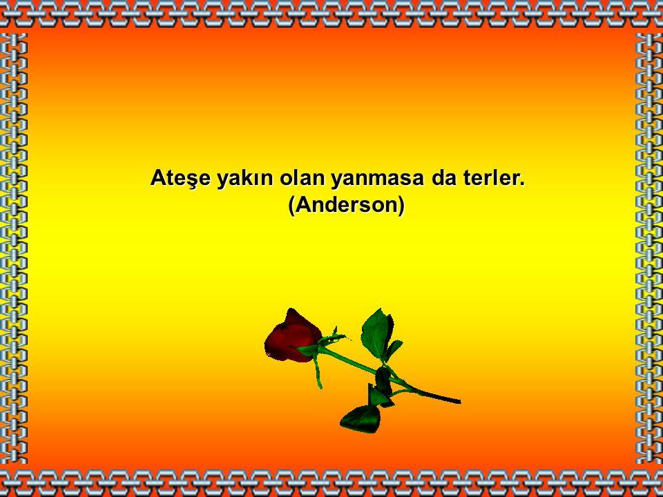 Yeni acılar eski acıları unutturur. (Türk Atasözü) (Türk Atasözü)