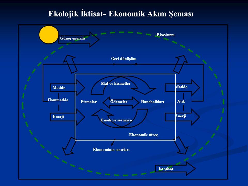 Güneş enerjisi Mal ve hizmetler Emek ve sermaye ÖdemelerFirmalarHanehalkları Ekonomik süreç Madde Enerji Hammadde Enerji Madde Atık Isı çıkışı Geri dönüşüm Ekonominin sınırları Ekosistem Ekolojik İktisat- Ekonomik Akım Şeması
