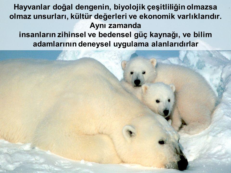 Hayvanlar doğal dengenin, biyolojik çeşitliliğin olmazsa olmaz unsurları, kültür değerleri ve ekonomik varlıklarıdır.