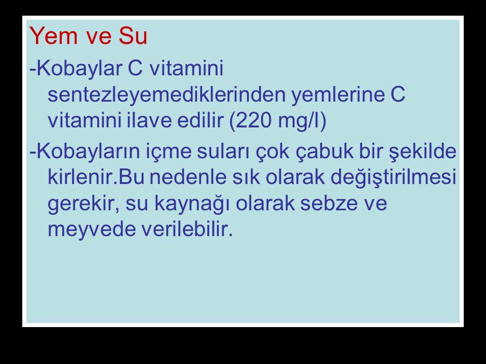 Yem ve Su -Kobaylar C vitamini sentezleyemediklerinden yemlerine C vitamini ilave edilir (220 mg/l) -Kobayların içme suları çok çabuk bir şekilde kirlenir.Bu nedenle sık olarak değiştirilmesi gerekir, su kaynağı olarak sebze ve meyvede verilebilir.