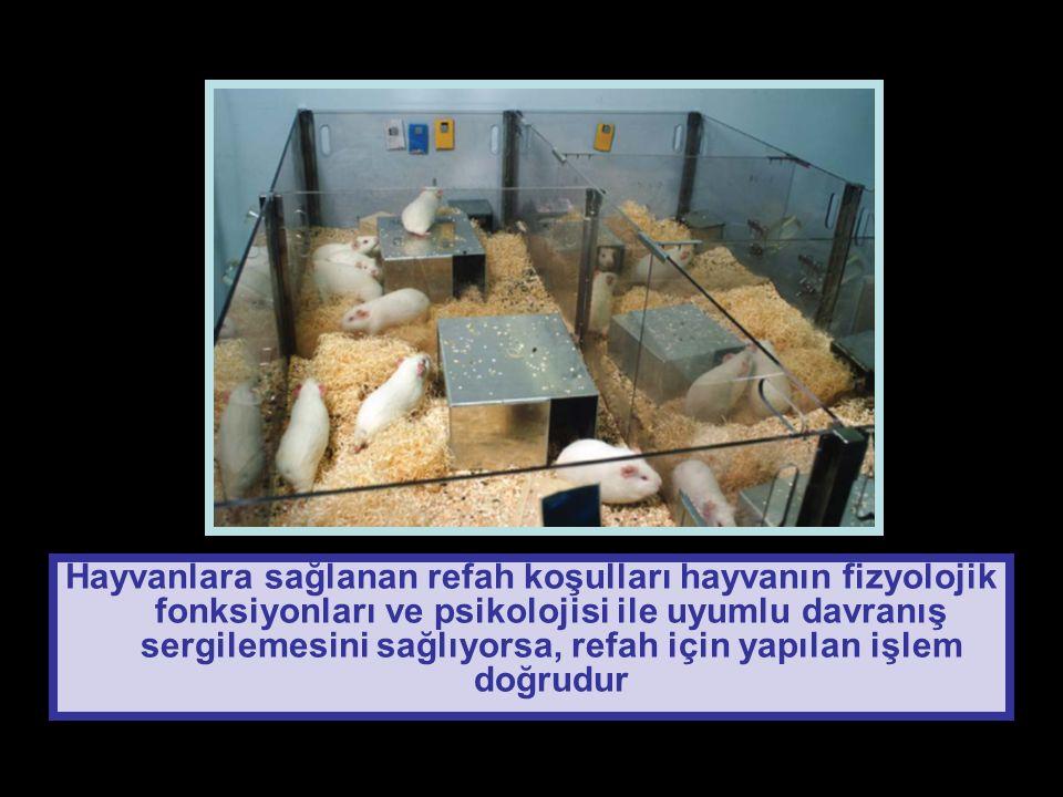Hayvanlara sağlanan refah koşulları hayvanın fizyolojik fonksiyonları ve psikolojisi ile uyumlu davranış sergilemesini sağlıyorsa, refah için yapılan işlem doğrudur