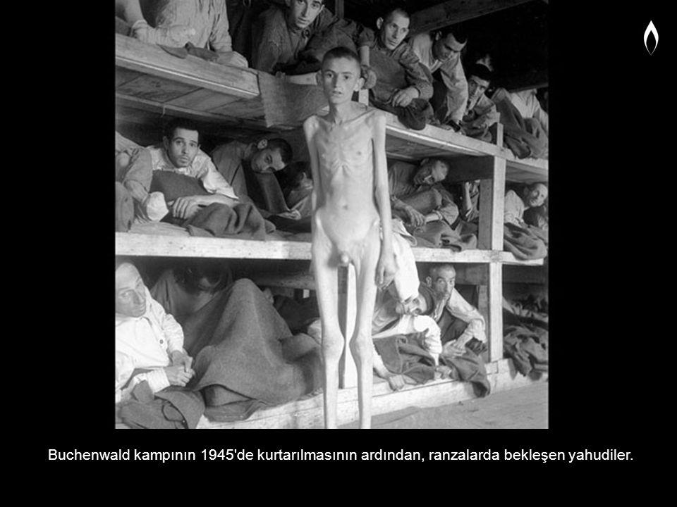 Buchenwald kampının 1945'de kurtarılmasının ardından, ranzalarda bekleşen yahudiler.