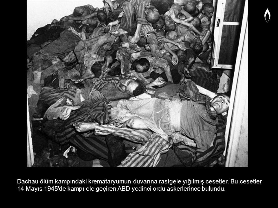 Dachau ölüm kampındaki kremataryumun duvarına rastgele yığılmış cesetler. Bu cesetler 14 Mayıs 1945'de kampı ele geçiren ABD yedinci ordu askerlerince