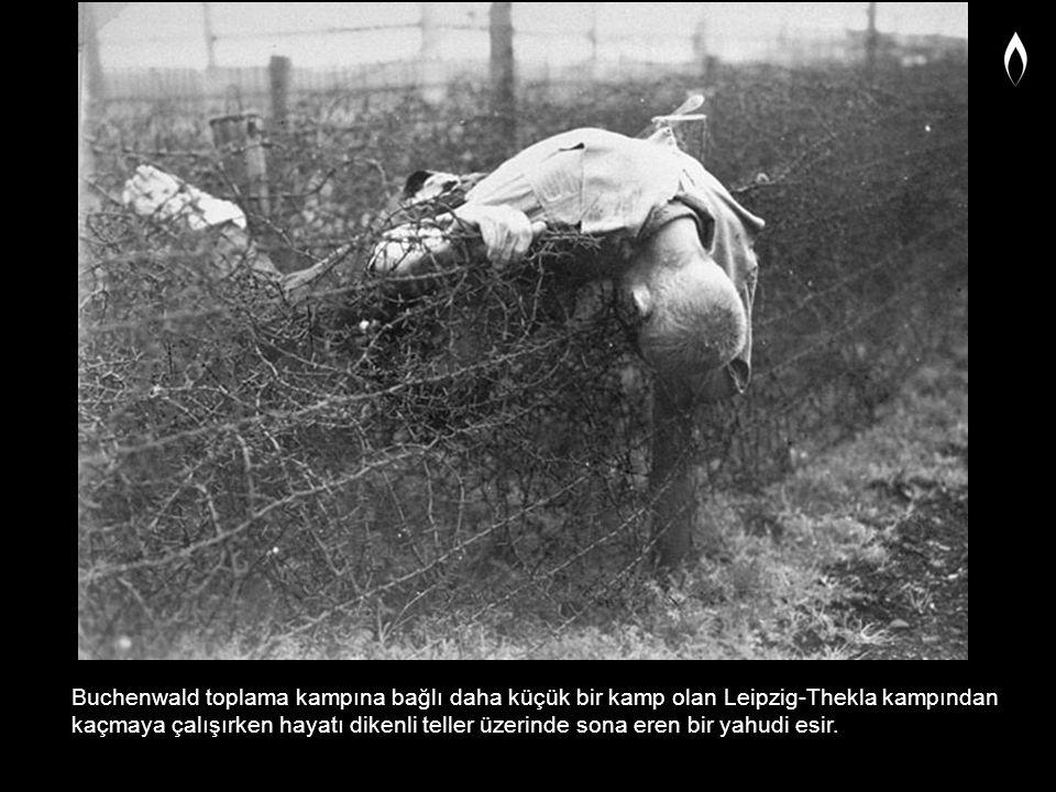 Buchenwald toplama kampına bağlı daha küçük bir kamp olan Leipzig-Thekla kampından kaçmaya çalışırken hayatı dikenli teller üzerinde sona eren bir yah