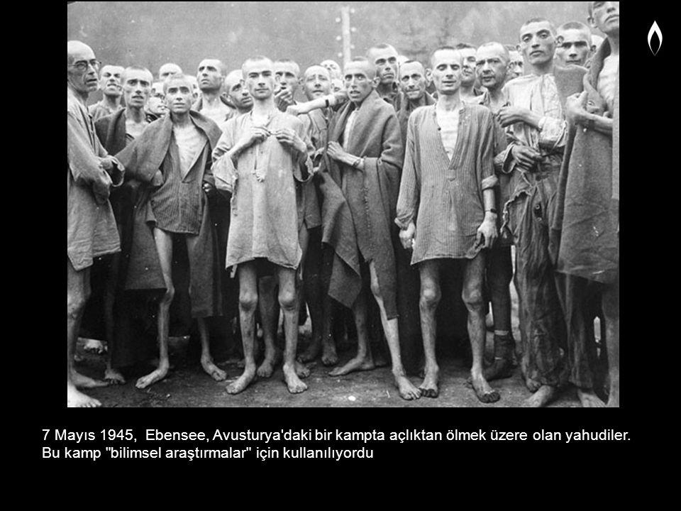 7 Mayıs 1945, Ebensee, Avusturya'daki bir kampta açlıktan ölmek üzere olan yahudiler. Bu kamp