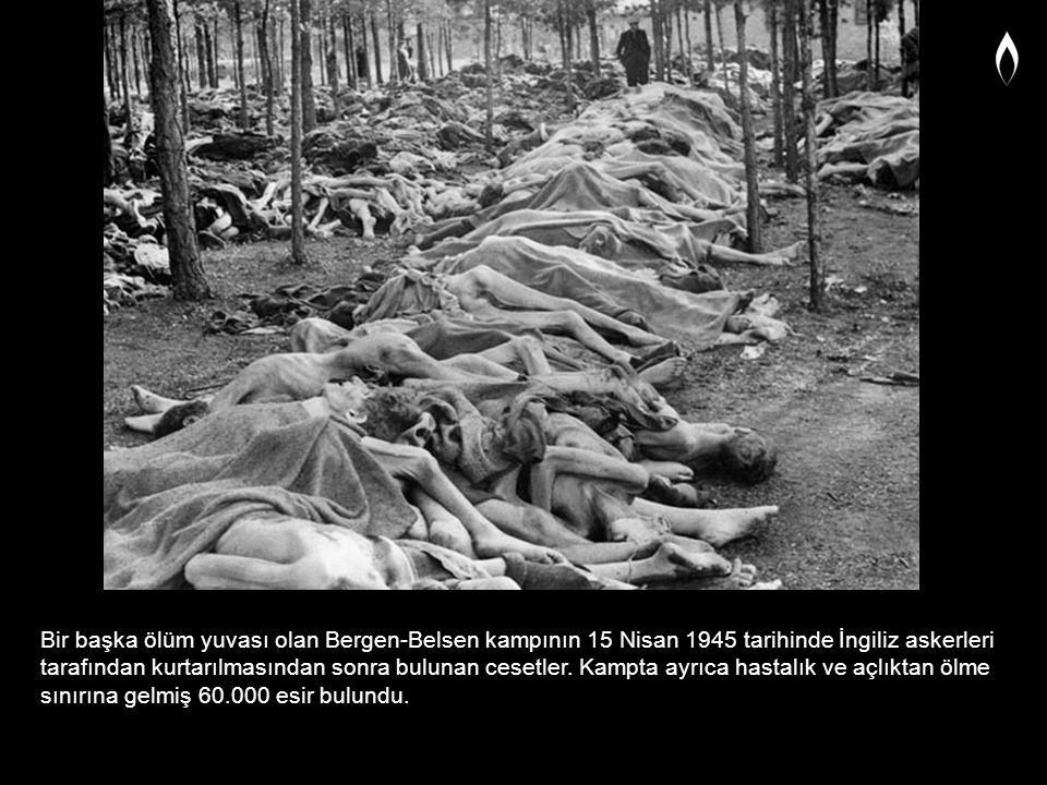Bir başka ölüm yuvası olan Bergen-Belsen kampının 15 Nisan 1945 tarihinde İngiliz askerleri tarafından kurtarılmasından sonra bulunan cesetler. Kampta