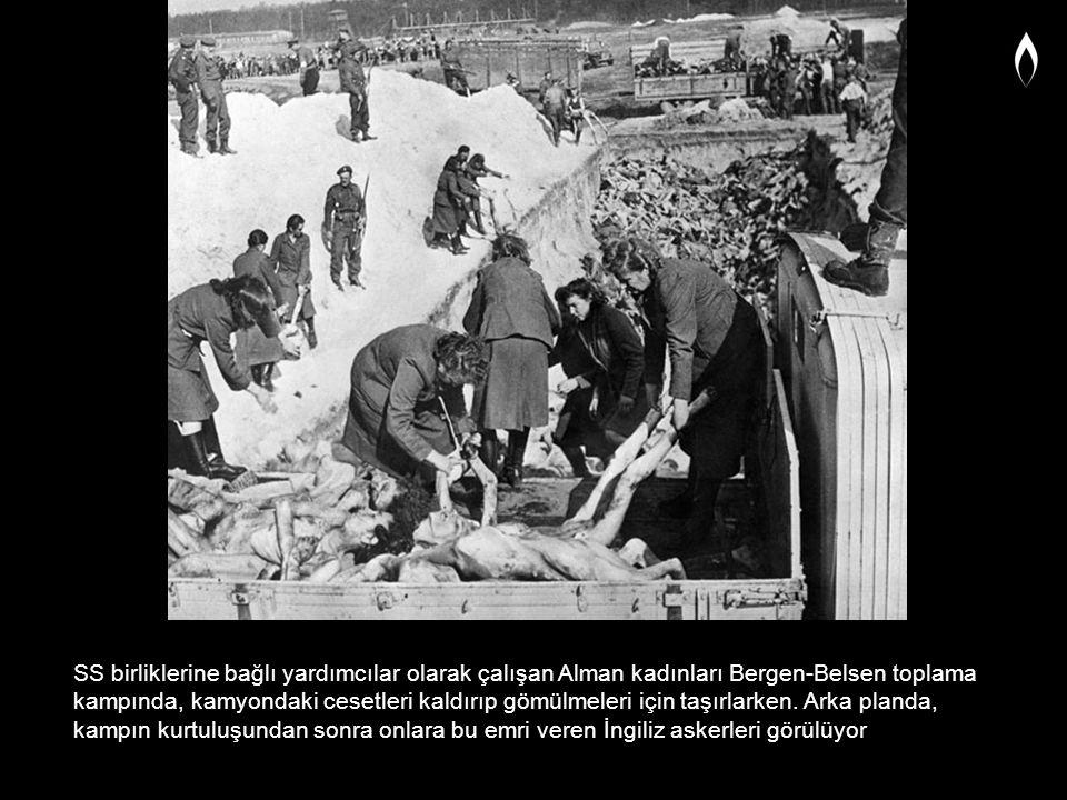 SS birliklerine bağlı yardımcılar olarak çalışan Alman kadınları Bergen-Belsen toplama kampında, kamyondaki cesetleri kaldırıp gömülmeleri için taşırl