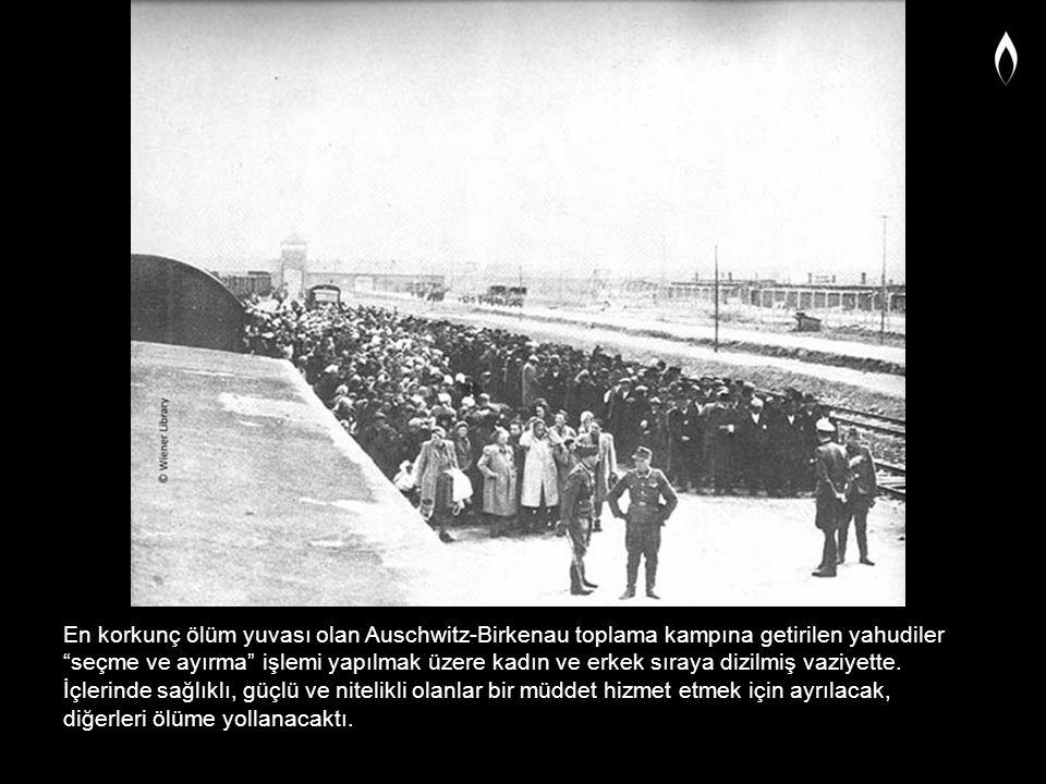 """En korkunç ölüm yuvası olan Auschwitz-Birkenau toplama kampına getirilen yahudiler """"seçme ve ayırma"""" işlemi yapılmak üzere kadın ve erkek sıraya dizil"""