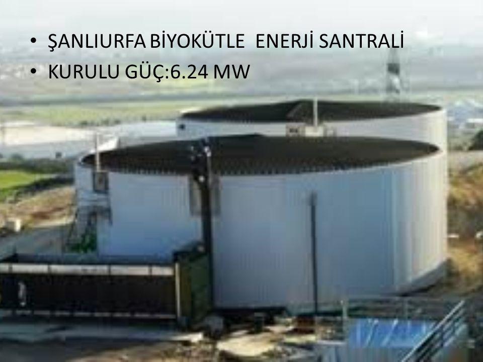 ŞANLIURFA BİYOKÜTLE ENERJİ SANTRALİ KURULU GÜÇ:6.24 MW