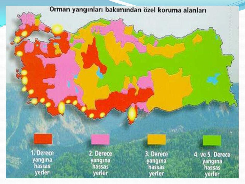 Maliyet ve bakım güçlükleri nedeniyle yangın tehlikesinin fazla ve ekstrem olduğu orman alanlarında inşa edilirler.